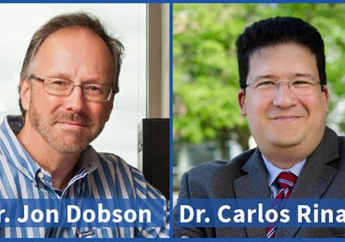 Dobson And Rinaldi Publish Book On Nanomagnetic Actuation In Biomedicine