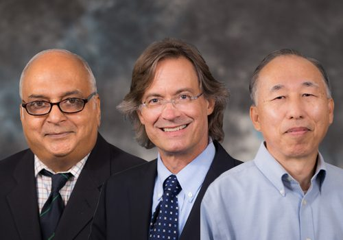 Three Department Of Chemical Engineering Professors Named UF Term Professors