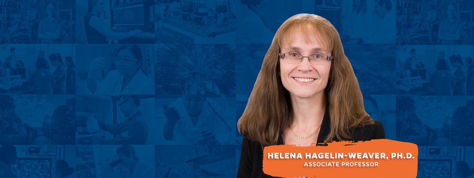Helena Hagelin-Weaver, Ph.D.