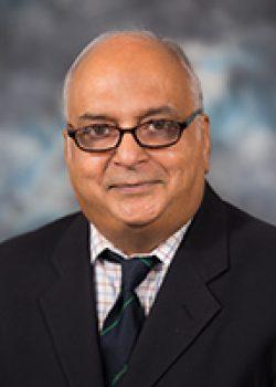 Zoom Graduate Seminar: Ranga Narayanan, Ph.D.