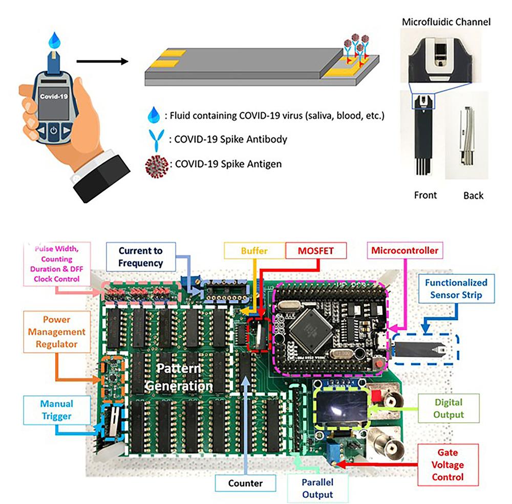 Ren Xian COVID-19 testing diagram